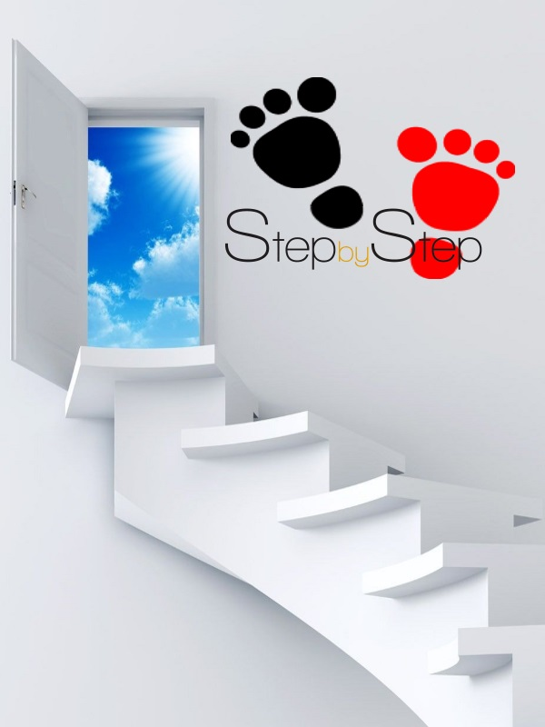 scoala gimnaziala iuliu maniu zalau - step by step